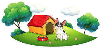 A dog outside its dog house Royalty Free Stock Images