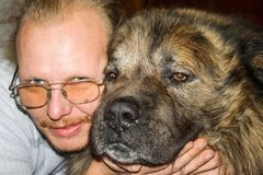 Dog with owner. Caucasian Shepherd Dog with owner stock photography