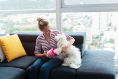 Dog Owner Cleaning Paws To Little Pet At Home. Young hispanic blonde woman using dedicated tool to clean legs and paws of her poodle dog. Pet care and hygiene Stock Images