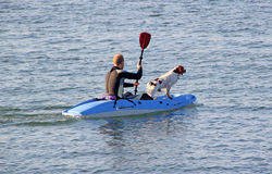 Dog and owner in kayak. Photo of a loyal pet dog enjoying his day out on the ocean with his master.photo taken on 23rd sept 2013 and ideal for active outdoor Royalty Free Stock Photo