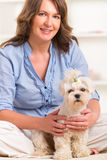 Dog and owner. Little dog maltese with his owner on the sofa in home Royalty Free Stock Photo