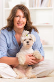 Dog and owner. Little dog maltese with his owner on the sofa in home Stock Photos