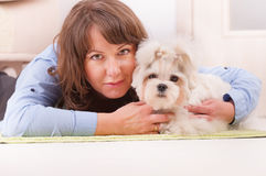 Dog and owner. Little dog maltese laying with his owner on the floor in home stock photography