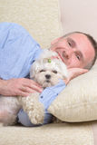 Dog and owner. Little dog maltese resting with his owner on the sofa in home Royalty Free Stock Image