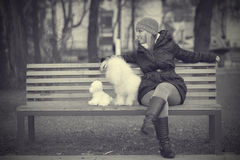 Dog with owner in the park Royalty Free Stock Photography