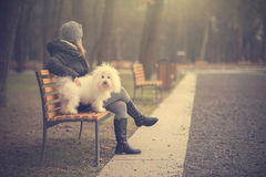 Dog with owner in the park Stock Images