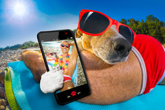 Dog and owner siesta at beach Royalty Free Stock Photos