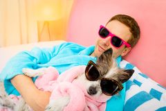 Dog with owner in spa wellness salon royalty free stock photography