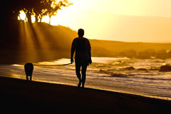 Dog and owner on sunset beach Stock Photo
