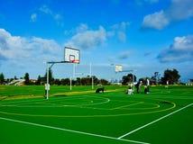 Dog Owners Socialising on Outdoor Basketball Court, Vaucluse, Sydney, Australia