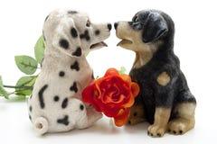 Dog pair Royalty Free Stock Image