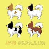 Dog Papillon Coloring Variations Vector Illustration vector illustration