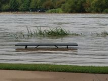 Where White Rock Creek Feeds White Rock Lake. The Dog Park Acoss the Inflow Channel isn`t getting as much as this picnic table has had. The Reed Beds beyond the stock photos