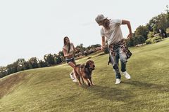Dog is a part of their family. Full length of young modern couple playing with their dog while spending carefree time in the park royalty free stock images