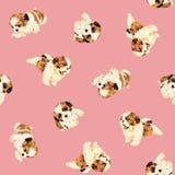 Dog pattern Stock Image