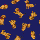 Dog pattern. I made the illustration of the puppy which I loved Royalty Free Stock Image