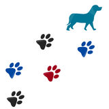 Dog paw print. Dog colorfull paw prints isolated with white background Royalty Free Stock Photography