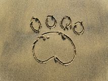 Dog paw print. The paw print on sand Royalty Free Stock Photos
