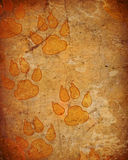 Dog paw prints Royalty Free Stock Photos