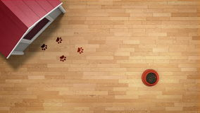 Dog paw prints stock video
