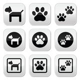 Dog, paw prints  buttons set Stock Photos