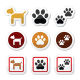 Dog, paw prints  icons set. Vector icons set of dog and paws isolated on white Stock Photography