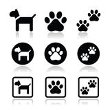 Dog, paw prints  icons set. Vector icons set of dog and paws  on white Royalty Free Stock Photos