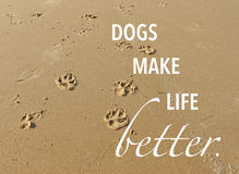 Dog paw prints in the sand with quote. Dog paw prints in the sand on the beach with quote Royalty Free Stock Images