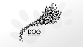 Dog paws background Stock Image