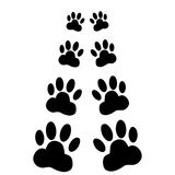 Dog paws following illustration on a white background Stock Photo