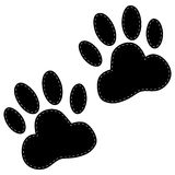 Dog paws following illustration on a white background. Dog paws following illustration on a white  background Royalty Free Stock Image