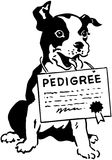 Dog With Pedigree Certificate Royalty Free Stock Image