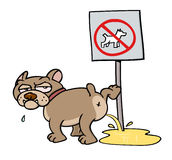 Dog peeing on NO DOGS sign Stock Photos