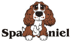 Dog peek up from word. Brown spaniel stick out from his name spaniel Stock Image