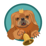 Dog Pekingese demanding Princess. Very persistent, ringing the bell, so she paid attention and took care of it vector illustration