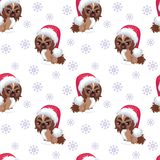 Dog Pekingese pattern. Christmas seamless pattern with the image of little cute puppies in the hat of Santa Claus. Children`s vector background Royalty Free Stock Images
