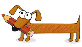 Dog and pencil Stock Photos