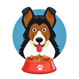 Dog pet face with red bowl full of food Stock Photos