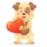 Dog pet  holding heart Royalty Free Stock Photography