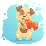 Dog pet isolated holding heart Royalty Free Stock Photo