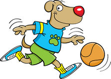 Dog playing basketball