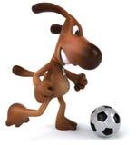 Dog playing football Stock Photo