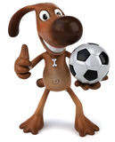 Dog playing football Stock Image
