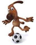 Dog playing football Royalty Free Stock Photos