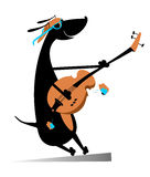 Dog is playing guitar Royalty Free Stock Images