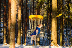 Dog playing Ultimate game at disc golf park Royalty Free Stock Photo