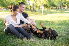 Dog plays with the owners on the grass. Royalty Free Stock Image