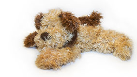 Dog plush toy Royalty Free Stock Photos