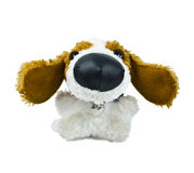 Dog Plush toy. The plush toy a dog is isolated on a white background royalty free stock photography