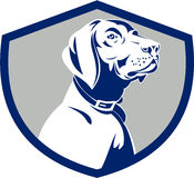Dog Pointer Head Profile Side Crest Retro. Illustration of a pointer dog head profile looking to the side set inside shield crest on isolated background done in Stock Photography